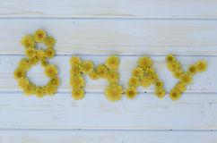 A oitava inscrição do 8 de maio em um fundo azul de madeira alinhou com flores do dente-de-leão Imagens de Stock