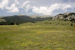 Oiti Mountain Meadows Royalty Free Stock Photo