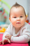 Oito meses de bebê idoso que coloca em sua barriga no assoalho Imagens de Stock