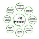 Oito princípios do HSE ilustração stock