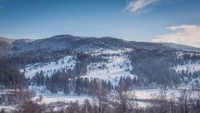 Oituz dolina Rumunia Obrazy Royalty Free