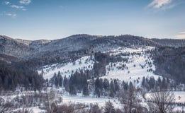 Oituz dolina Rumunia Zdjęcia Stock