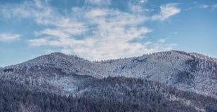 Oituz dolina Rumunia Zdjęcie Royalty Free