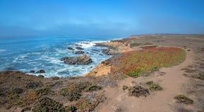 Ojämn central Kalifornien kustlinje på Cambria Kalifornien USA royaltyfria foton
