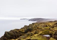 Ojämn kust- plats Royaltyfri Fotografi