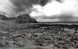 Ojämn kustlinje i svartvitt Arkivfoton