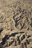 ojämn terrain arkivbild
