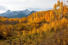 Ojämna Colorado berg i nedgång Royaltyfria Bilder