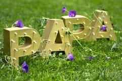 Ojca dzień - naturalny fotografia royalty free