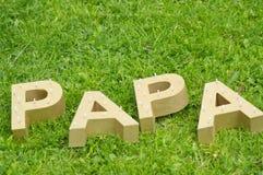 Ojca dzień - naturalny fotografia stock