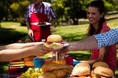 Ojca omijania talerz hamburger syn w parku Zdjęcie Royalty Free