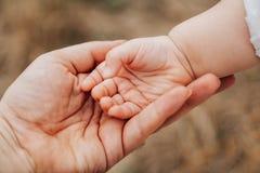 Ojca ` s ręki prowadzenie jego dziecko córka w lecie plenerowym, rodzina c zdjęcia royalty free