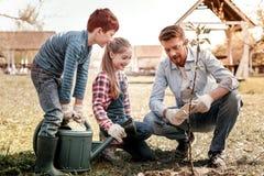 Ojca seans jak drzewny dorośnięcie na pastylce fotografia stock