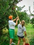 Ojciec i córka podnosimy jabłka w sadzie zdjęcia royalty free