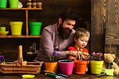 Ojciec i syn Ojca dzień Kwiat opieka Glebowi użyźniacze szczęśliwe ogrodniczki z wiosna kwiatami brodaty mężczyzna i trochę fotografia stock