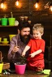 Ojciec i syn Ojca dzień Kwiat opieki podlewanie Glebowi użyźniacze Rodzinny dzień charcica Brodaty mężczyzna i chłopiec obraz royalty free