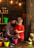 Ojciec i syn Ojca dzie? Kwiat opieki podlewanie Glebowi u?y?niacze szcz??liwe ogrodniczki z wiosna kwiatami brodaty m??czyzna obrazy royalty free