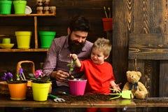 Ojciec i syn Rodzinny dzień charcica Brodata mężczyzny i chłopiec dziecka miłości natura szczęśliwe ogrodniczki z wiosną zdjęcie stock