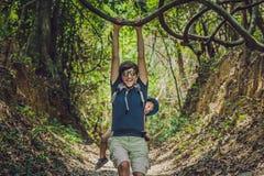 Ojciec niesie jego syna w dziecku przewożenie wycieczkuje w lasowym turyście niesie dziecka na jego z powrotem w naturze Vi Zdjęcia Royalty Free