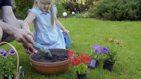 Ojciec pomocy mała córka kopać dziury w ziemi w garnku dla kwiatów zbiory wideo