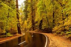 Ojciec z dziecko syna wizyty Yosemite parkiem narodowym w Californa Obrazy Royalty Free