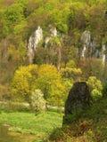 Ojcow nationalpark i Polen Arkivfoto