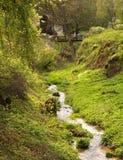 Ojcow park narodowy w Polska Zdjęcie Royalty Free