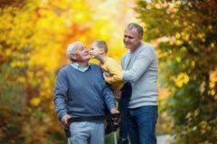Ojcuje dorosłego syna i wnuka out dla spaceru w parku obraz stock