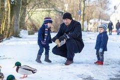 Ojcuje i dwa małej rodzeństwo chłopiec karmi kaczki w zimie. Fotografia Stock