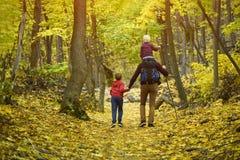 Ojcuje i dwa syna chodzi w jesień lasu plecy widoku zdjęcie royalty free