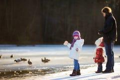 Ojcuje i jego córki karmi kaczki przy zimą Zdjęcie Stock