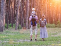 Ojcuje, matka i mały syna stojak przed lasowym, tylni widokiem, ujawnienia zawodnik bez szans zmierzchu czas Zdjęcie Stock
