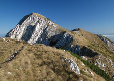 Ojeada de la montaña Fotos de archivo libres de regalías