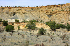 At the Ojito Wilderness Area, New Mexico Stock Photography