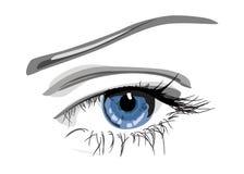 Ojo azul stock de ilustración