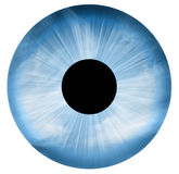 Ojo azul aislado Fotos de archivo