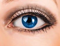 Ojo azul de la mujer hermosa con los latigazos largos Foto de archivo libre de regalías