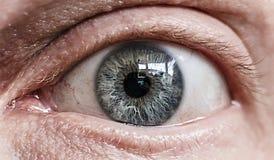 Ojo azul de Ol detalladamente Fotografía de archivo libre de regalías