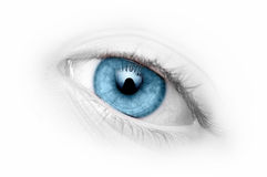 Ojo azul del primer Imagen de archivo