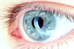 Ojo azul en la macro, flash del anillo Imagenes de archivo