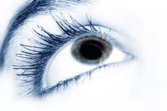Ojo azul hermoso Fotos de archivo
