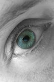 Ojo azul, macro Imagen de archivo