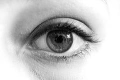 Ojo blanco y negro Fotos de archivo libres de regalías
