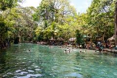 Ojo de Agua, Ometepe island, Nicaragua Royalty Free Stock Images