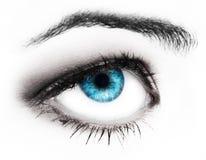 Ojo de azules de la mujer Fotografía de archivo libre de regalías
