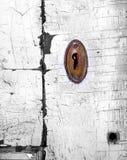 Ojo de la cerradura de Colorized Fotografía de archivo libre de regalías
