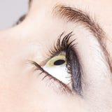 Ojo de la muchacha Fotografía de archivo libre de regalías
