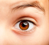 Ojo de la muchacha de Ittle Foto de archivo