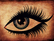Ojo de la mujer del Grunge Imagenes de archivo