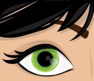 Ojo de la mujer del vector Fotografía de archivo